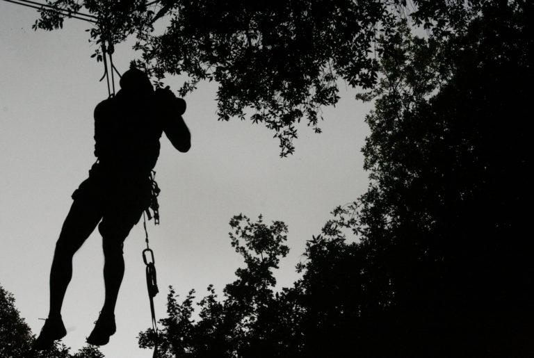 flavio_oliva_caves_cinematography_treeclimg_01