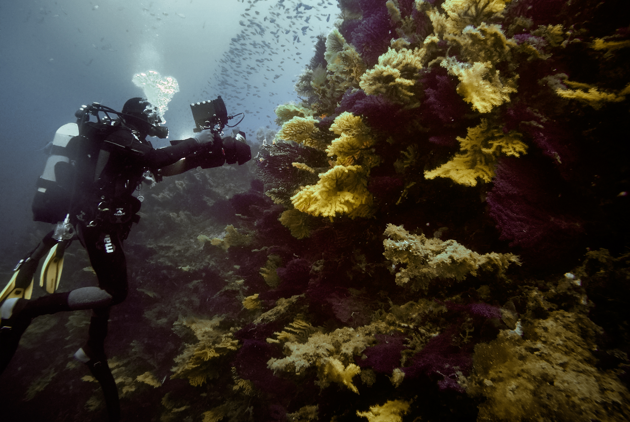 flavio_oliva_underwater_cinematography_05