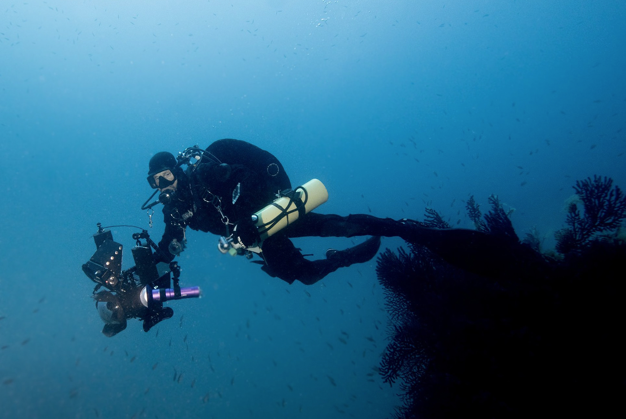 flavio_oliva_underwater_cinematography_12
