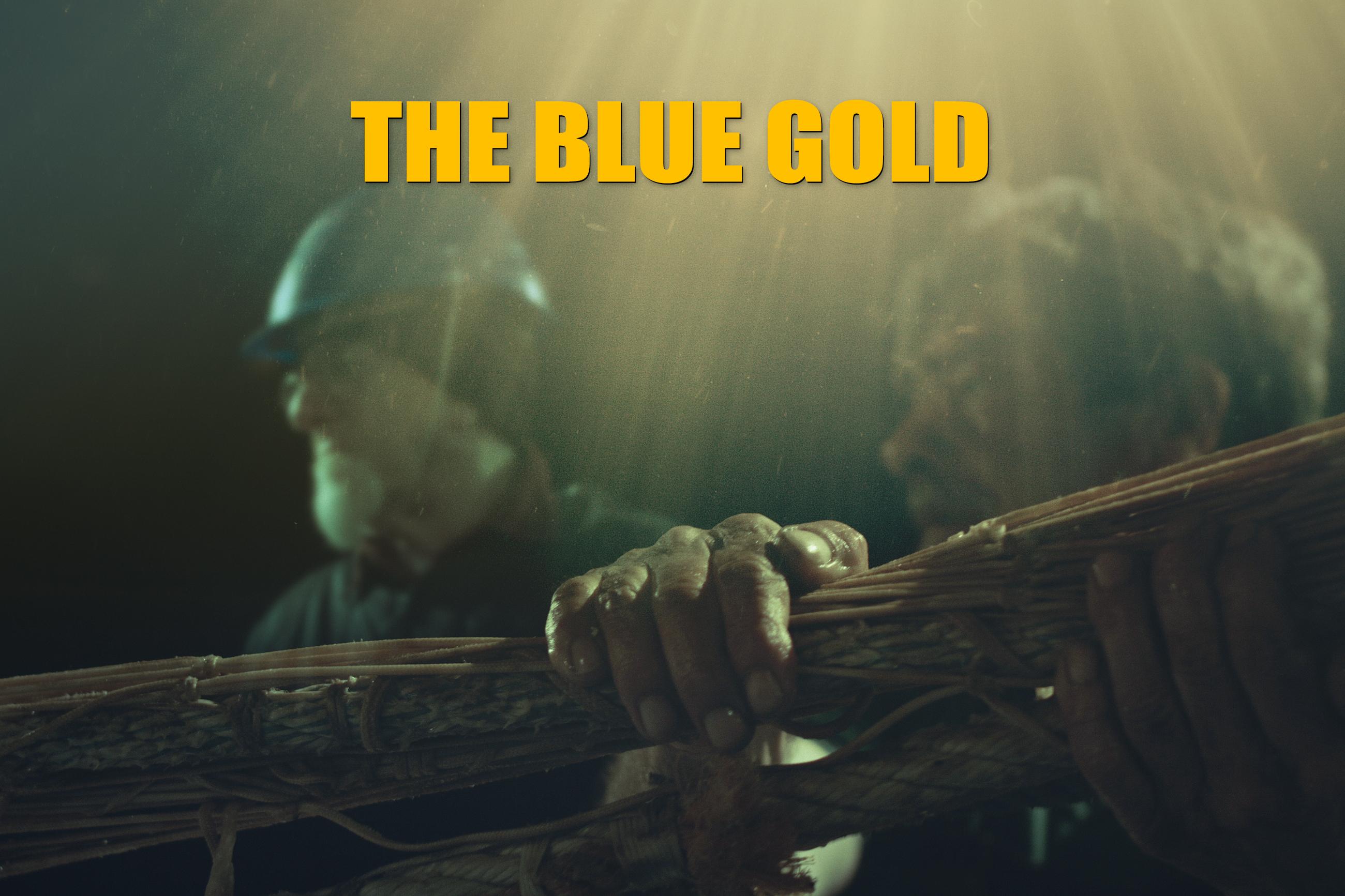 the_blue_gold_documentary_cnr_ismar_finship_by_flavio_oliva_01